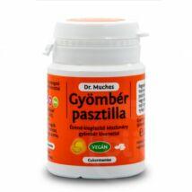DR. MUCHES GYÖMBÉR PASZTILLA